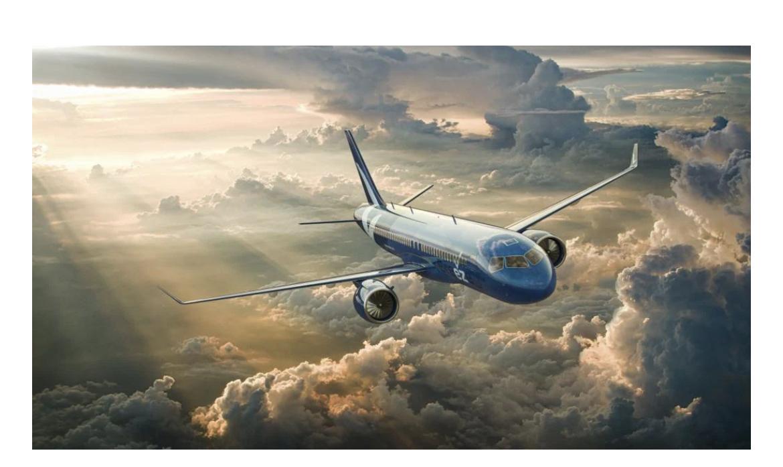 コロナ 新ビジネス 新規事業 航空 空港 飛行機 ブリーズ航空 旅行